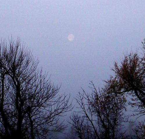 moon sunrise thesky springfieldmissouri theozarks rottlady