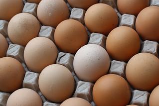 Eggs | by pietroizzo