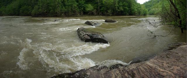Big South Fork River at Flood Stage, Angel Falls Trail, Big South Fork NRRA, Scott Co, TN