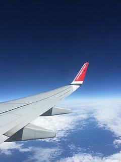 Norwegian Wing Tip