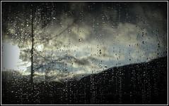 Raindrops on the Window VII