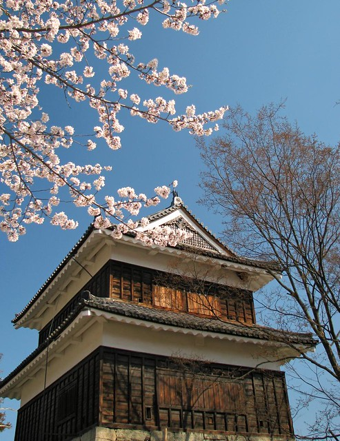 IMG_4945 Ueda Castle