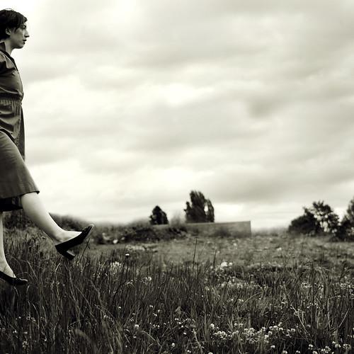 62:365; Dorothy