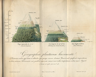 Geographica plantarum | by APS Museum