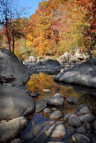 fall water rose stone creek river gulf tennessee fork bee cave scotts caney