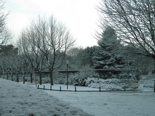 Il neige à Brest | by LostInBrittany