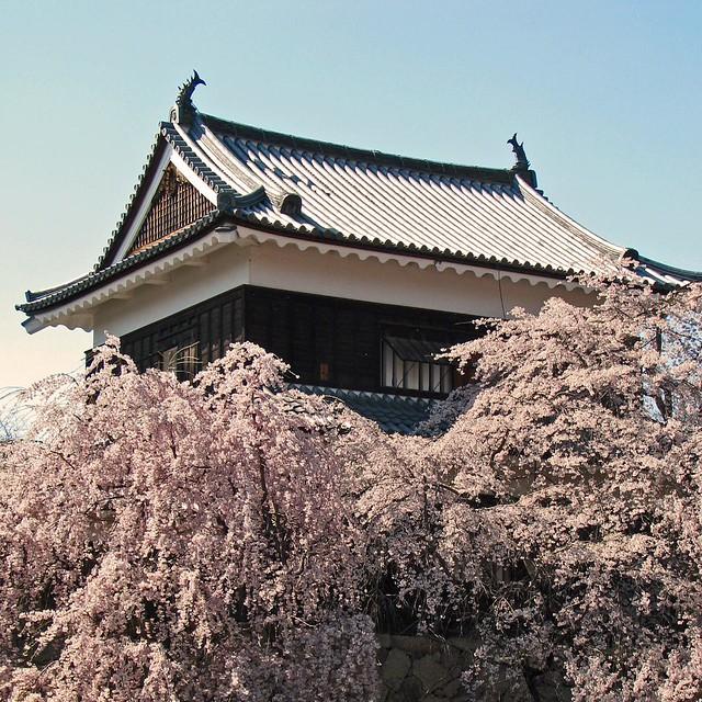 IMG_4935 Ueda Castle