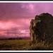 Bourtie Stone Circle 2 by baldieheidit