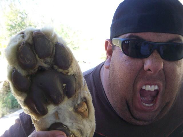 Freeze Dried Lion Paw!