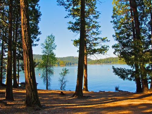 california lake landscape jenkinsonlake pollockpines nejmantowicz jenkinsonreservoir
