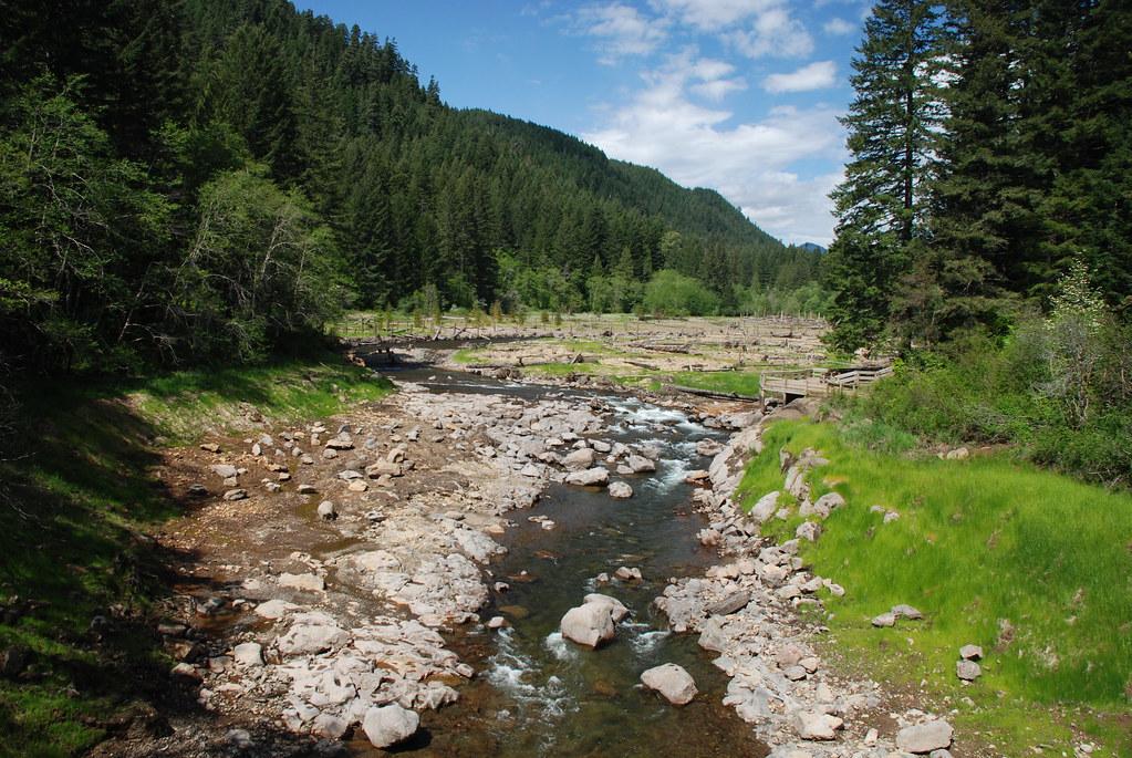 Former Reservoir Site on Trout Creek