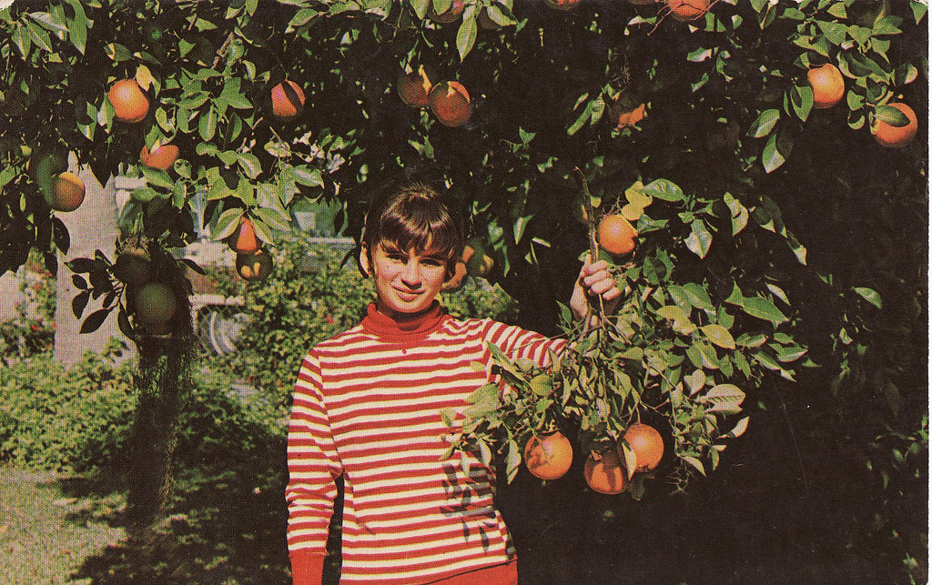 Girl with Florida Oranges