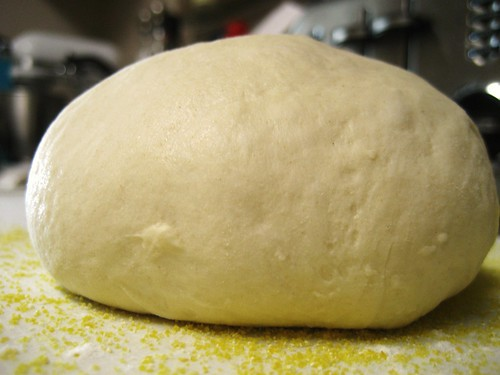 artisan bread dough shaped into boule | by Stacy Spensley
