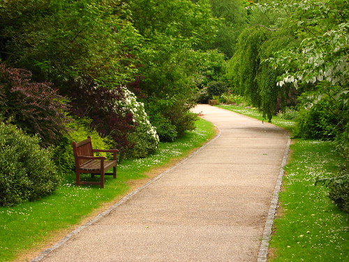 Bench and Path in the Hill Garden | by Laura Nolte