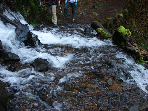 Trail crossing below Wilson Falls
