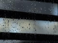 Raindrops on the Window IV