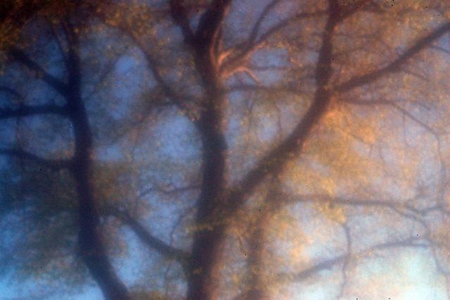 45-ZS-f94-07.jpg