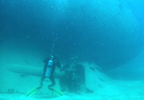 Diver looking up at the hull | by mattk1979