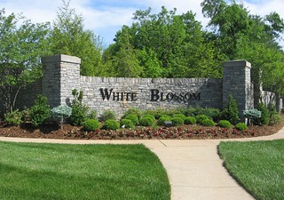 Wondrous White Blossom Louisville Ky 40241 Homes For Sale In The Vi Download Free Architecture Designs Scobabritishbridgeorg