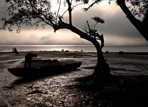 africa nature beauty rural river landscape boot transport scenic natuur canoe westafrica afrika kano landschap westafrika rivier natuurschoon scenicbeauty guineabissau tombali canámina guineebissau ruraal catanhez canamina riocacine
