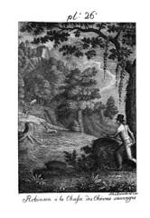 002- Robinson a la caza de cabras salvajes | by ayacata7