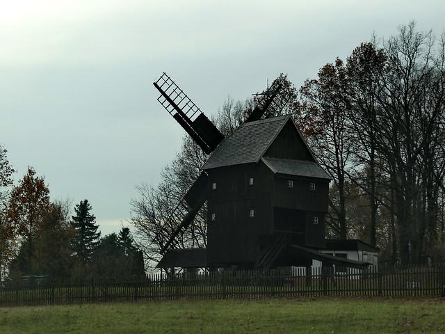 Baumsafari in Sachsen wenn er will, sei klug für mein Theil bleibt sicher daß Zeichen oft im Traume von Aergerniß und Lust der Leute denn Vielen träumt bei nächtiger Zeit manch' Dinge nur dunkel übergleist, das nachher deutlich sich erweist 00578