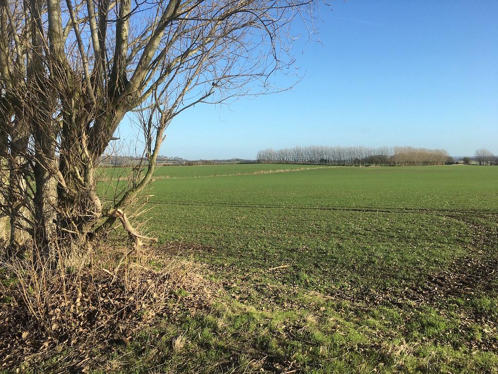 Large arable field Farningham to Sole Street walk