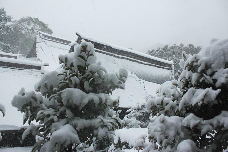 雪の鎌倉_25