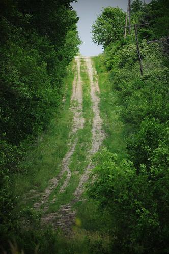 road nikon path ks country dirt trail paola gravel countryroad gravelroad d5000