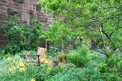 Brunswick Community Garden