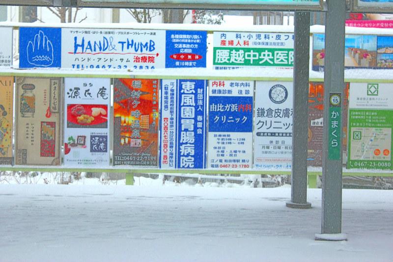 雪の鎌倉_01