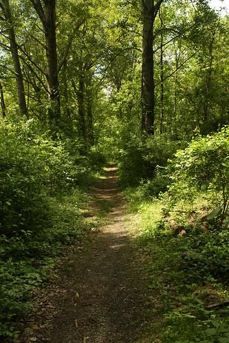 pennsylvania emmaus naturetrail lehighcounty poolwildlifesanctuary