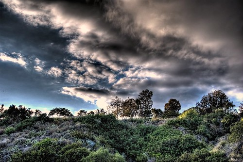 california trees its clouds know dude explore stupid what but hdr ventura sigma18200 i nikond80