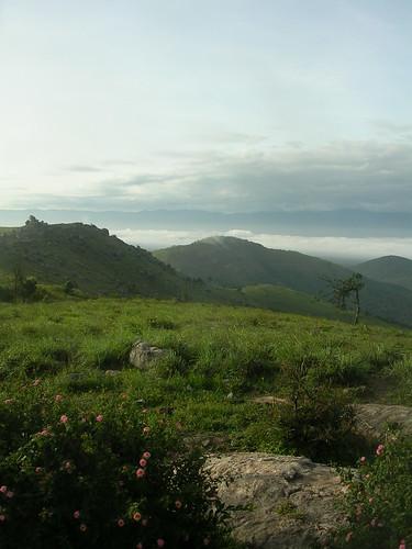 india mountains karnataka bandipur