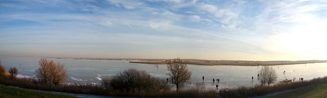 Oostvaarders panorama