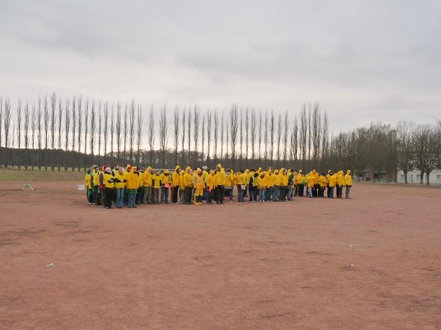 Act (yellow)
