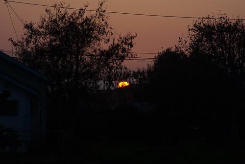 california sunset lindsay