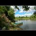 Alviela river / Foz do rio Alviela