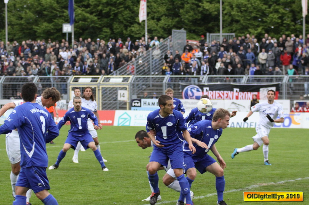 Vfb Vs Schalke