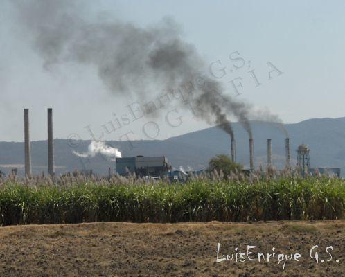 Ingenio Atencingo Puebla