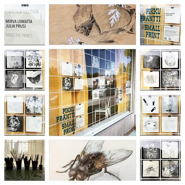 Window exhibition by me & Mirva Liimatta