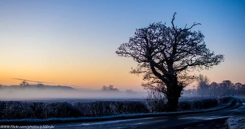 winter 35mm prime nikon d7200 frosty misty tree landscape sunrise rabie2412