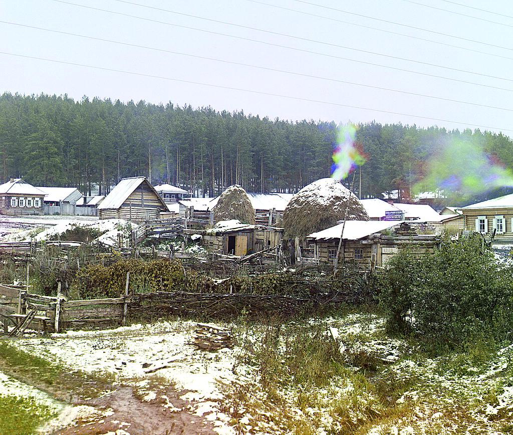 Storage of hay. Vyazovaya, 1910