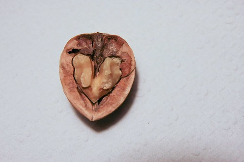 Walnut heart | by xtinabot