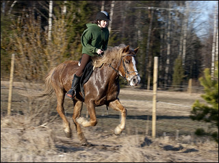 Teppo works up a sweat in early Spring   by Don Wright