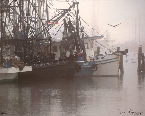 morning film nature fog mississippi landscape boats harbor nikon fuji harbour pass shrimp calm slidefilm scan christian coastal scanned fujifilm 100 1995 fujichrome provia f5 cruse passchristian fujiprovia100 passchristianharbor crusefineartscan coastelectric coastelectricpower