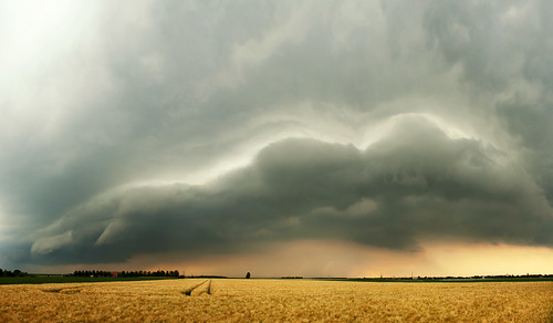 shelf thunderstorm unwetter böenfront gewitterfront shelfcloud therebeastormabrewin cloudsstormssunsetssunrises