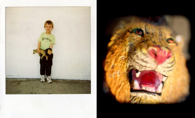 Drew and his lion, diptych