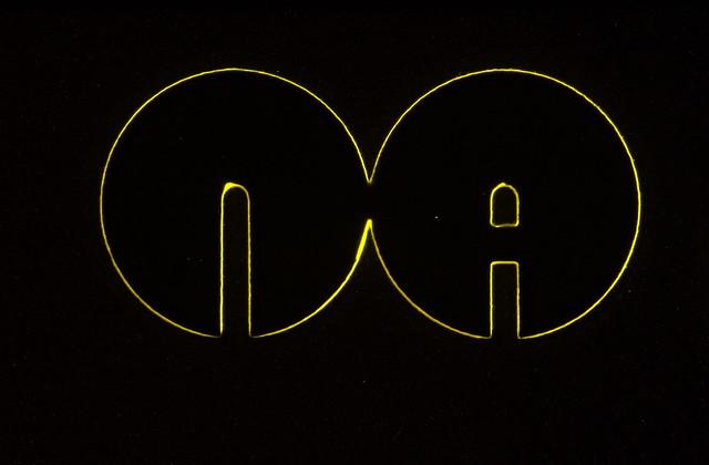 Naim Audio Logo - macro shot