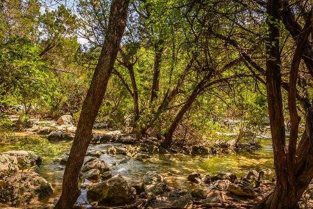 Barton Creek Greenbelt East
